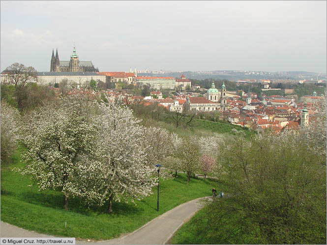 Czech Republic: Prague: View from the edge of town
