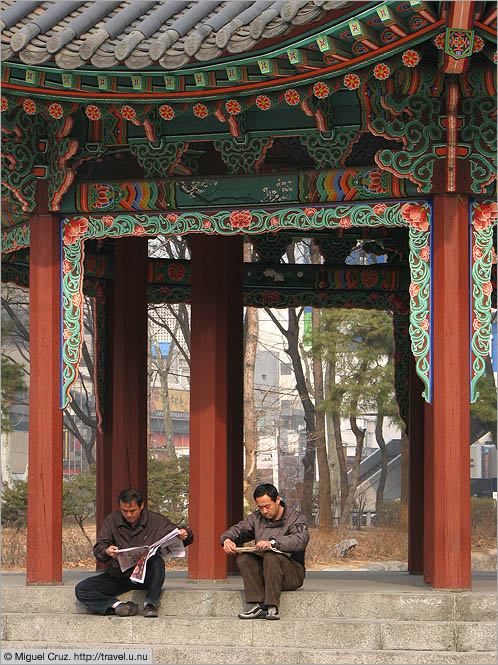 South Korea: Seoul: Reading in Tapgol Park