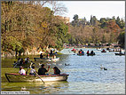 Canoeing in Chapultepec