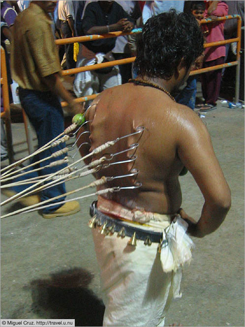 Malaysia: Thaipusam in KL: Tugging at the hooks